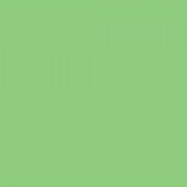 Χαρτόνι Κανσόν Apple Green 50x70cm 220gr. Canson