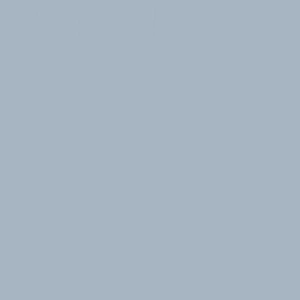 Χαρτόνι Κανσόν Light Grey 50x70cm 220gr. Canson