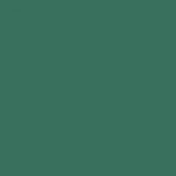 Χαρτόνι Κανσόν Moss Green 50x70cm 220gr. Canson