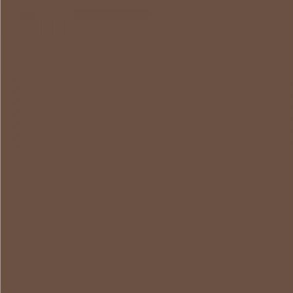 Χαρτόνι Κανσόν Nut 50x70cm 220gr. Canson